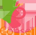FP Conseil Logo